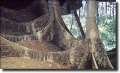 Διαβάστε περισσότερα: Antonio Gaudí